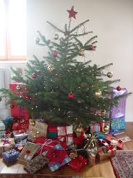 Canaan Fir Good Christmas Tree by Christmas Tree Choice Guide