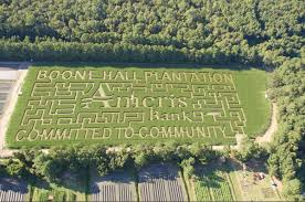 Columbus Georgia Pumpkin Patch by Ameris Bank To Sponsor 2016 Corn Maze At Boone Hall Pumpkin Patch