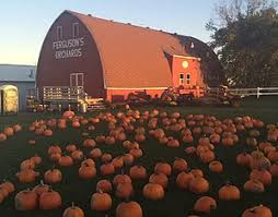 Michigan Pumpkin Patch Apple Orchard by Fergusons Orchards