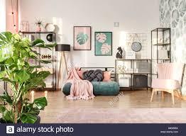 big monstera pflanze im designer wohnzimmer einrichtung mit