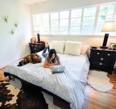 sealy adjustable beds decor csublogs com