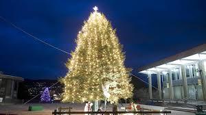 Lighting Up The Season Lehigh Valley Christmas Tree Ceremonies