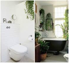 Best Plants For Bathroom Feng Shui by Bathroom Landscape 1492617682 Gettyimages 184365511 Best