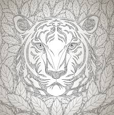 How I Colouring Magnificent Animals Coloring Book And Nuhun Gemisi Boyama Kitabi