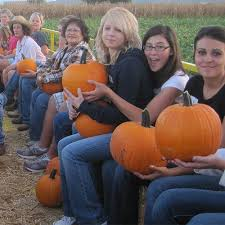 Medina Pumpkin Patch 2014 by Apple Annie U0027s Pick Your Own Fruit Orchards Produce Farm And