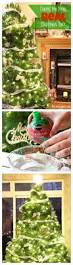 Christmas Tree 7ft Tesco by Best 25 Real Christmas Tree Ideas On Pinterest Real Xmas Trees
