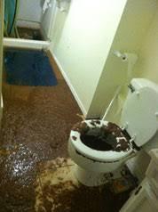 toilettes bouches que faire deboucher wc allo débouchage 24h 24 7j 7 debouchage de canalisation