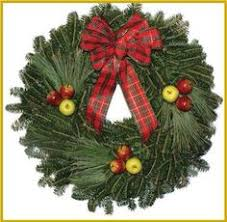Fraser Fir Christmas Trees Delivered by 24 In Cocoa Chic Real Live Fraser Fir Christmas Wreath Fresh