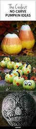 Oscar The Grouch Pumpkin Carving by Best 25 No Carve Pumpkin Decorating Ideas On Pinterest Carving