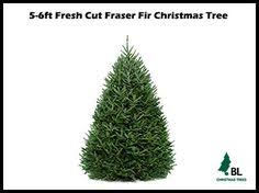 Balsam Christmas Tree Care by Exclusive Wisconsin Balsam Tree Almost Real Trees Pinterest