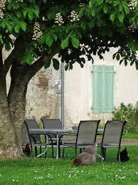 la maison du canal bunny ronfleur picture of la maison du