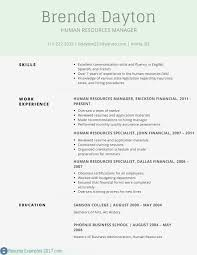 Professional Summary For Resume Examples Free Resume Profile ...