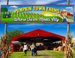Carmichaels Pumpkin Patch Oklahoma by Pumpkin Town Farms Home Facebook