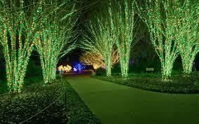 Outdoor Christmas Lighting Installer Nashville Tn