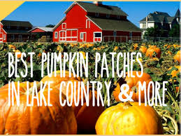 Pumpkin Patch Milwaukee by Best Pumpkin Patches In Lake Country And More Waukesha Wi Patch