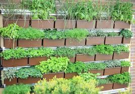 Vertical Herb Garden • Insteading