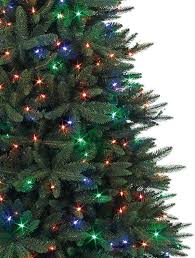 Plantable Christmas Trees Columbus Ohio by Buy Black Spruce Artificial Christmas Trees Online Balsam Hill