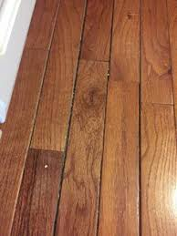 Wood Floor Cupping In Kitchen by Poll Wood Floors In The Kitchen