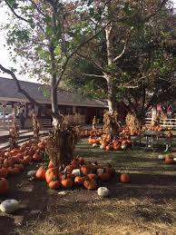Irvine Pumpkin Patch Hours by September 2015 Daytripping Mom