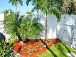 Perfect Plants To Place Over Septic Systems | Angie's List Garden Design With Backyard Trees Privacy Yard A Veggie Bed Chicken Coop And Fire Pit You Bet How To Illuminate Your With Landscape Lighting Hgtv Plant Fruit Tree In The Backyard Woodchip Youtube Privacy 10 Best Plants Grow Bob Vila 51 Front Landscaping Ideas Designs A Wonderful Dilemma Ramblings From Desert Plant Shade Digital Jokers Growing Bana Trees In Wearefound Home 25 Potted Ideas On Pinterest Indoor Lemon Tree