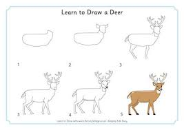 Full Size Of Coloring Pagessteps To Draw A Deer Elegant Steps