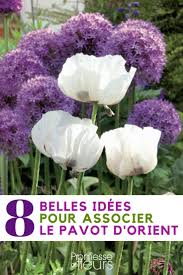 Lifetime 10x8 Sentinel Shed by 23 Best Abri De Jardin Images On Pinterest Chalets Garage And