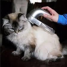 Siberian Cat Hair Shedding by Amazon Com Start Cat Dog Pet Hair Fur Remover Shedd Grooming