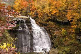 Chagrin Falls Pumpkin Roll 2015 by View Fall Foliage In Northeast Ohio