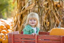 Southwest Ohio Pumpkin Patches by Pittsburgh Weleski Transfer Inc