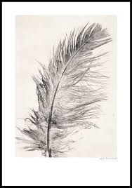 Bengtson Christmas Tree Farm by Feather