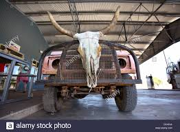Decorated Cow Skulls Australia by Outback Vehicle With Cattle Skull Doon Doon Roadhouse