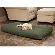 K9 Ballistics Bed by Furniture Fabulous Indestructible Dog Bed Reviews How To Clean
