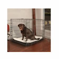 Petco Dog Beds by Petco Premium 2 Door Dog Crate Review U2013 Ourfamilygear