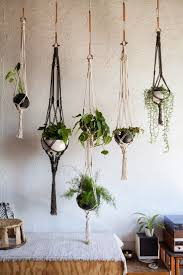 Good Plants For Windowless Bathroom by Plant Plants For Windowless Bathroom Small House Plants Low