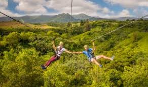 kauai visitors bureau experience the adventure of kauai by sue kanoho executive director