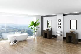 pflanzen im badezimmer geht das gut zuhause bei sam
