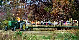 Pumpkin Farms In Southern Maryland by Middleton U0027s Cedar Hill Farm Fall Festival Giveaway Winner