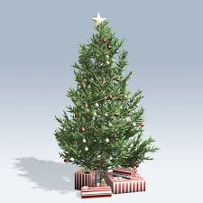 Christmas Tree Species For by Christmas Tree Speedtree