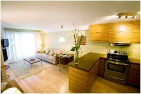 Small Kitchen Family Room Ideas  A Guide Best Kitchen and