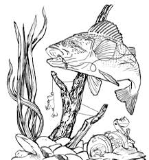 Imagenes De La Pesca Artesanal Para Colorear