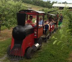 Apple Pumpkin Picking Queens Ny by Best Strawberry Picking Ny Spots For Kids And Families