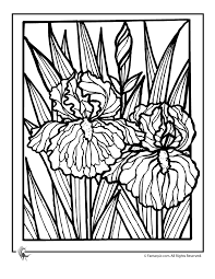 Enjoyable Design Ideas Spring Coloring Pages For Adults Flowers