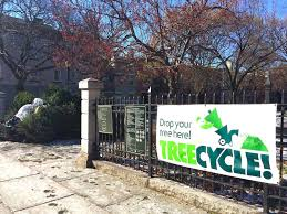 Christmas Tree Disposal Nyc 2015 by Cobble Hill Association
