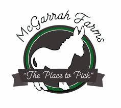 Mayfield Pumpkin Patch by Mcgarrah Farms Home Facebook