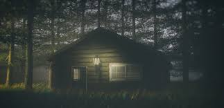100 House In Forest Darkness 4k HD Artist 4k Wallpapers Images