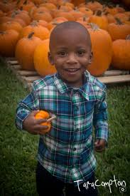 Mrs Heathers Pumpkin Patch Albany by 26 Best Twin Boys Images On Pinterest Twin Boys Newborns And
