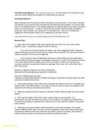Examples Of Resumes Objectives Elegant Example Resume Declaration Awesome Strong Objective