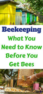 Beekeeping - What You Need To Know Before You Get Bees For Your ... How To Keep Bees A Beginners Guide Bkeeping Deter And Wasps And Identify Which Is Family 2367 Best Homestead Animals Images On Pinterest Poultry Raising Best Bee Hives Images Photo Wonderful To Away Become A Backyard Bkeeper Fixcom Why Your Child Needs Working Bee Urban Honey Back Yard Made Simple Image On Marvellous 301 Keeping Bees 794 The Complete 7step Chickens In Plants That Simplemost