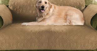 Sofa Pet Covers Walmart by Sofa Wonderful Pet Sofa Protector Mainstays Reversible