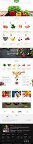 Palace Pets Pumpkin Walmart by Best 25 Online Pet Store Ideas On Pinterest Online Pet Supplies